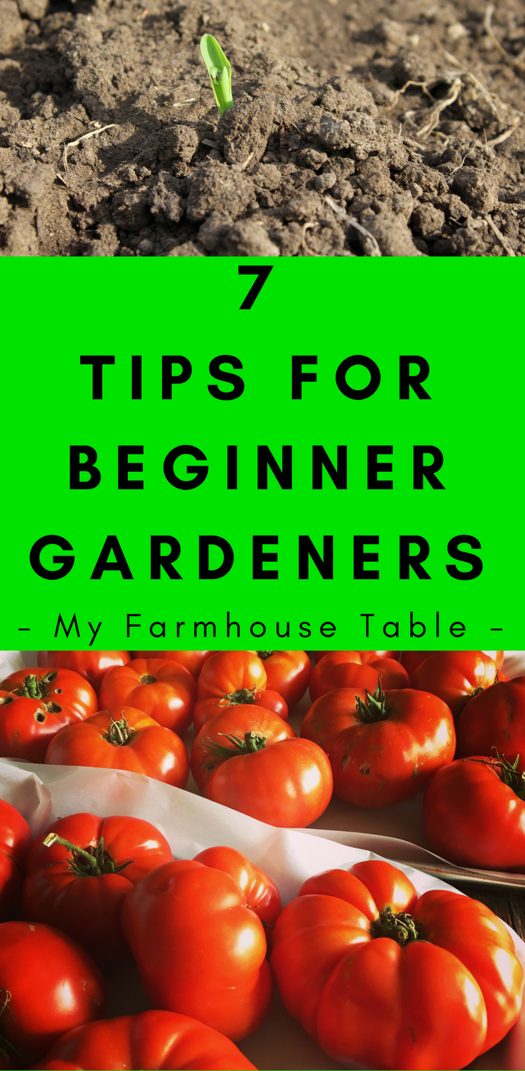 7 Tips For Beginner Gardeners Homesteaders How to Start a Vegetable Garden Tips for growing great vegetables How to start a garden My Farmhouse Table