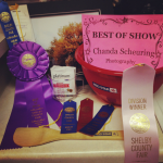 10 Lessons Learned At The County Fair