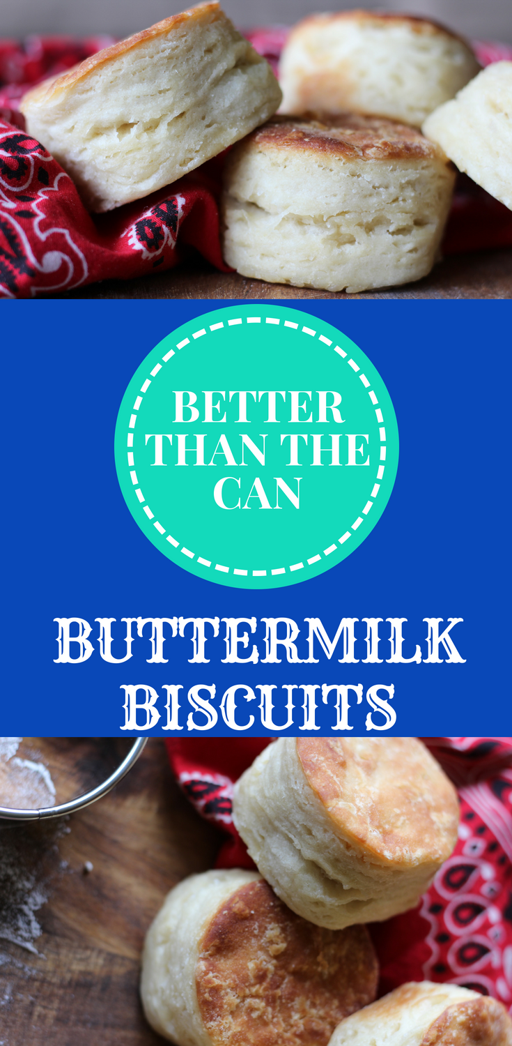 Better Than The Can Buttermilk Biscuits Recipe From Scratch Homemade Easy and Fluffy Biscuit Recipe Pillsbury Biscuit Recipes Biscuits and Gravy