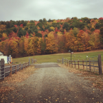 Fall In Upstate New York