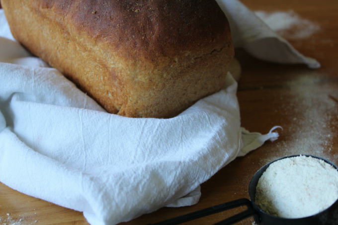 Homemade Honey Whole Wheat Bread Great Harvest Copycat Recipe Simple and Easy Whole Wheat Bread Recipe My Farmhouse Table