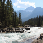 Where to Stop Along Canada's Icefields Parkway
