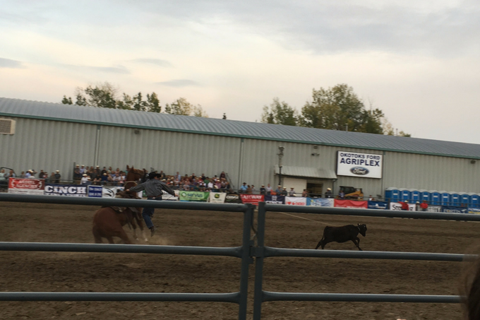 Alberta Foothills My Farmhouse Table Okotoks Pro Rodeo Calf Roping