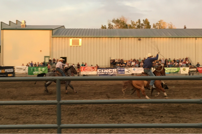 Alberta Foothills My Farmhouse Table Okotoks Pro Rodeo Team Roping
