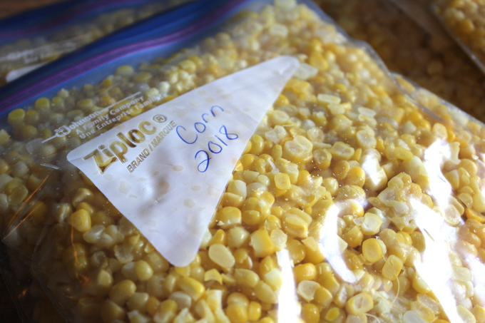 How To Freeze Sweet Corn The Best Way To Freeze Corn Fresh Corn on the Cob Homesteading Preserving Gardening