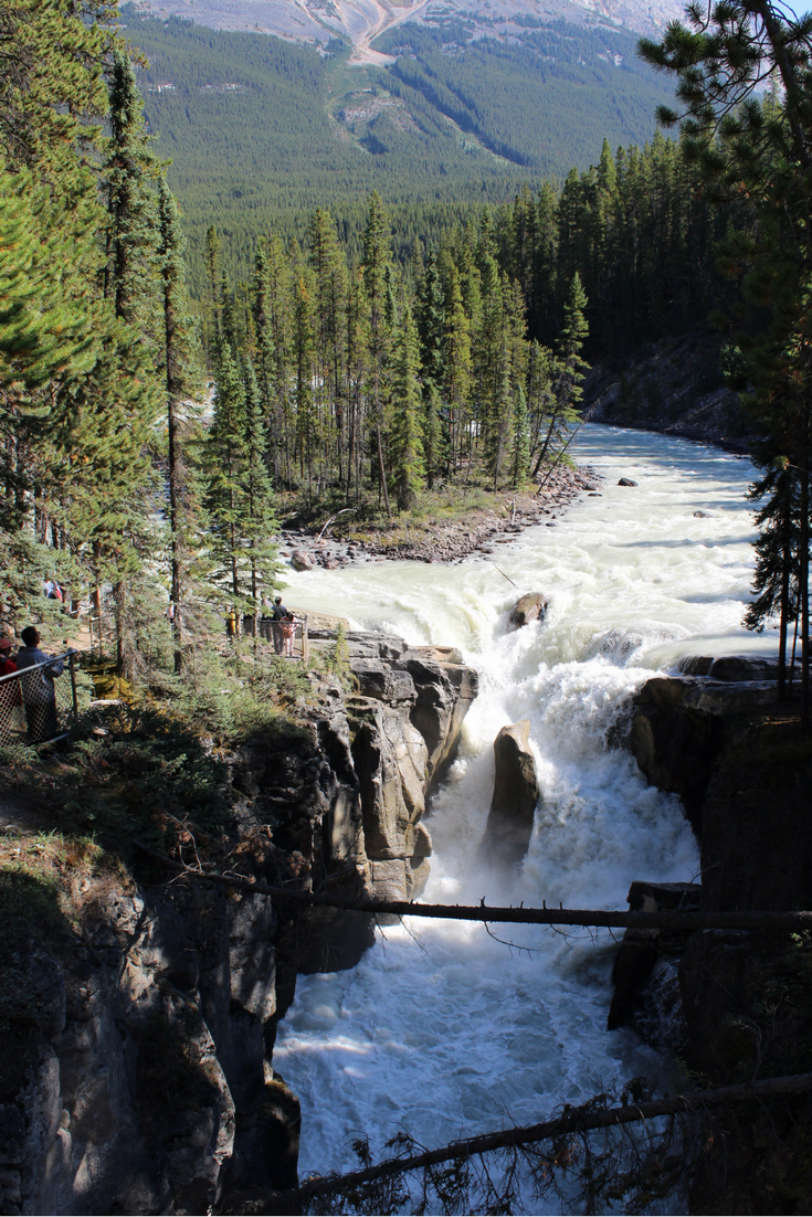 Where to Stop Along Canada's Icefields Parkway My Farmhouse Table Travel Canada Sunwapta Falls