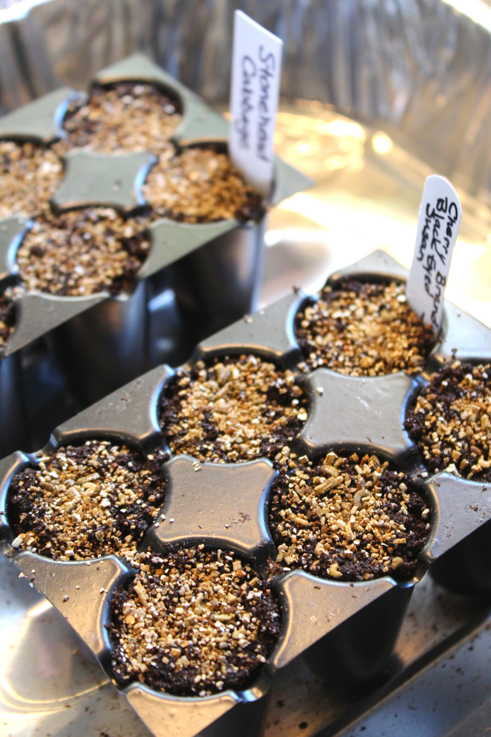 How To Start Seeds 101 Tips and Tricks for Starting Vegetable and Flower Seeds Indoors The Do's and Don'ts of Seed Starting My Farmhouse Table