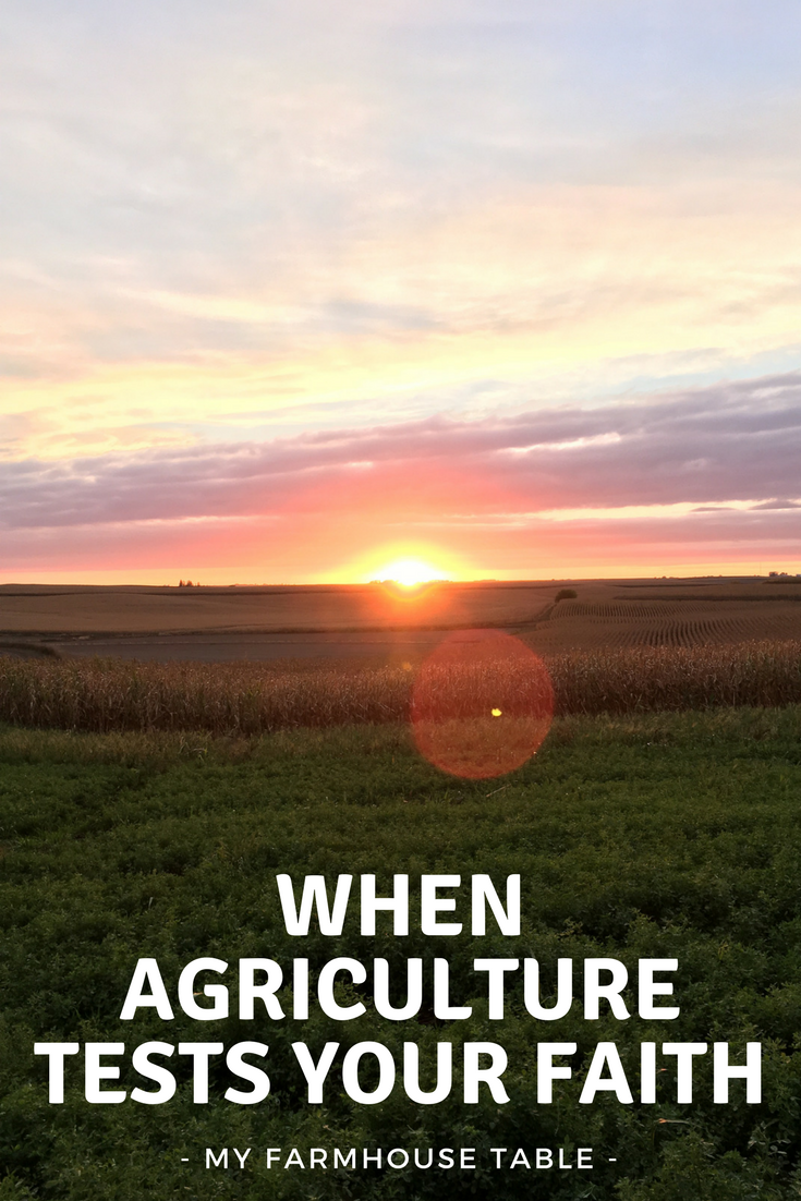 When Agriculture Tests Your Faith National Ag Day National Agriculture Week Faith Family Farming My Farmhouse Table